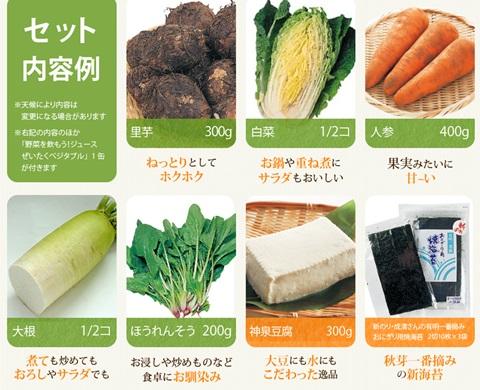 大地の宅配野菜の中身
