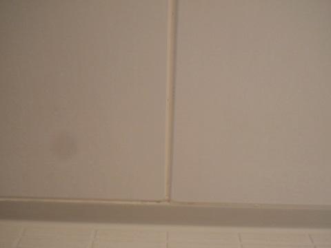 浴槽の黒ずみ使用後