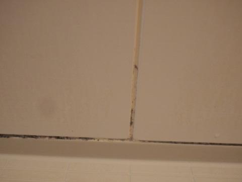 浴槽の黒ずみ使用前