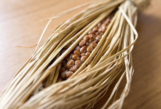 納豆の栄養