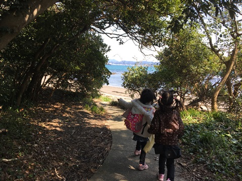 沖ノ島探検隊
