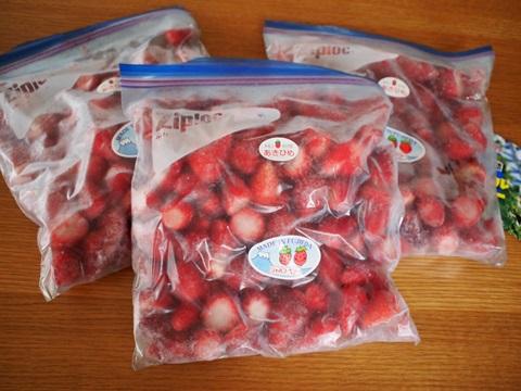 静岡県 藤枝市の冷凍イチゴ