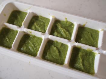 ブロッコリーペーストを冷凍