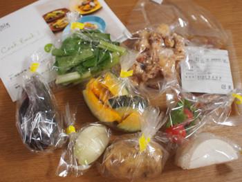 彩り野菜の酢鶏