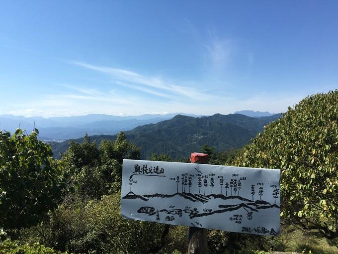 宝登山からの景色