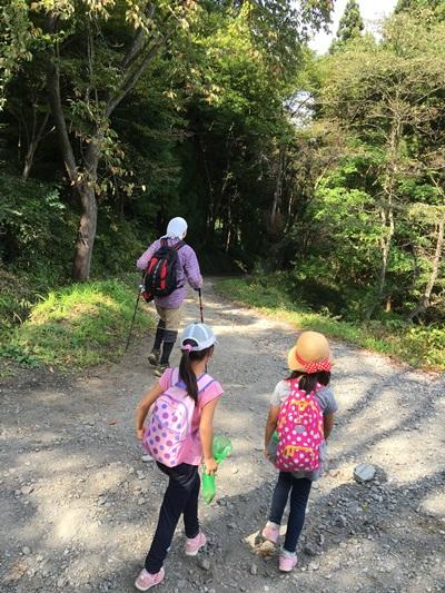 下山のハイキング