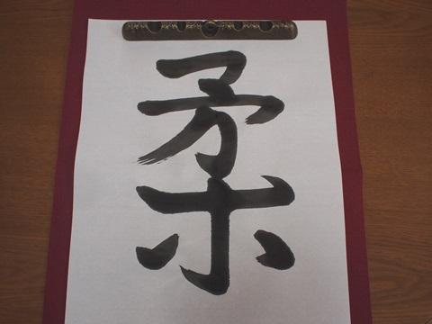 今年の漢字「柔」