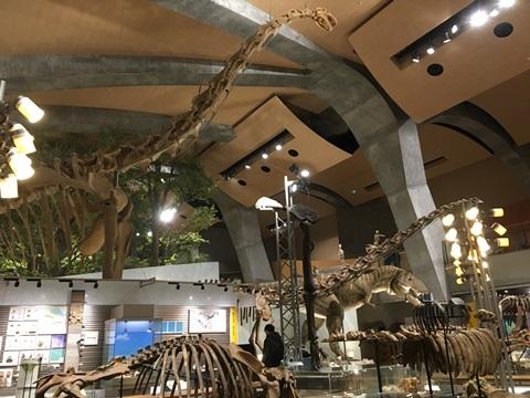 群馬県立自然博物館