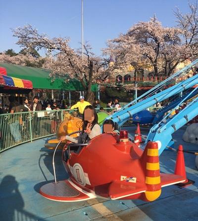 けぞうじ遊園地の桜