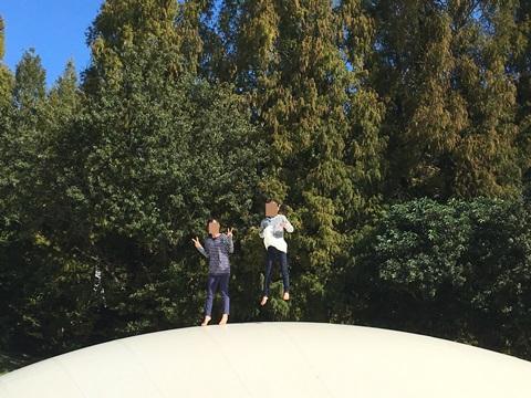 昭和記念公園ふわふわドーム