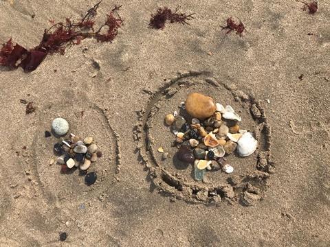 貝殻とシーグラス戦利品