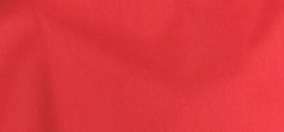 サマーブライト 赤
