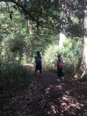 鎌倉プチハイキング