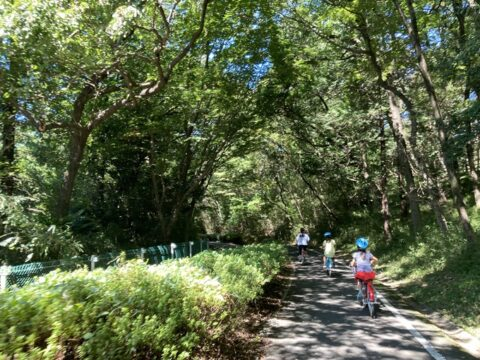 森林公園サイクリング
